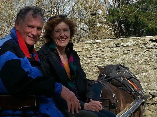 Muckross Riding Stables B&B: Muckross Garden-Horse