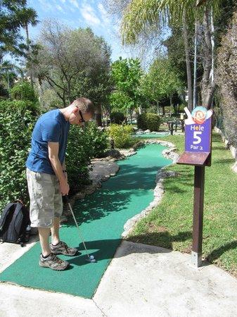 Golf Fantasía: Hole 5 on the Flower Course