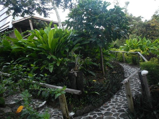Nanuya Island Resort: to our room