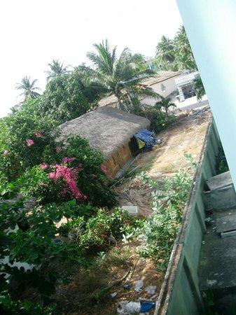 Tien Phat Beach Resort: discarica con topi adiacente le camere