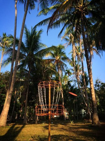 Samui Frisbee Golf: Straight in the basket