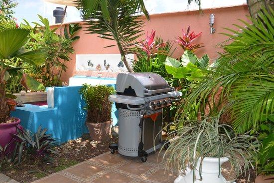 Villas Las Anclas: Gas Grill