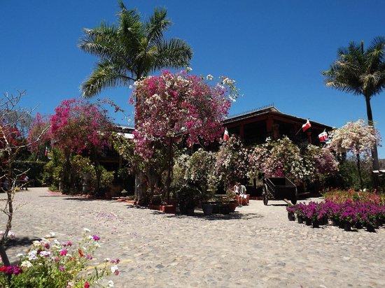 Vallarta Botanical Gardens : Main building