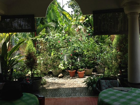 Bella Homestay : Patio