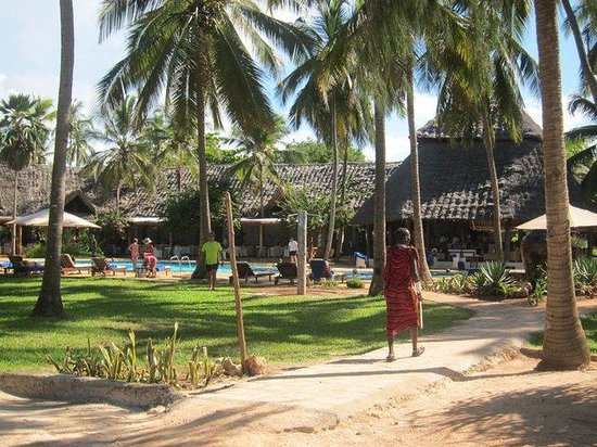 Bluebay Beach Resort and Spa: pool and grounds