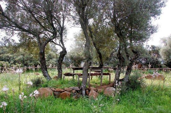 Ecoparco Neule': Einer der schön angelegten Picknickplätze
