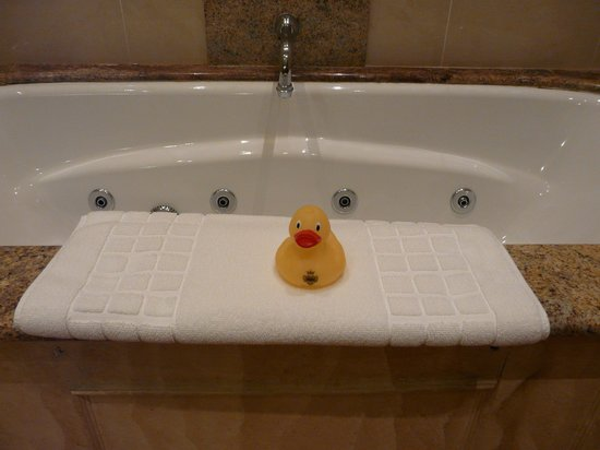 Lainston House Hotel: Lainston duck!