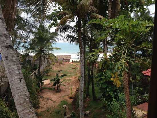 Varkala Marine Palace: View from the room