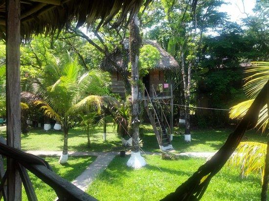 Casa De La Iguana: View