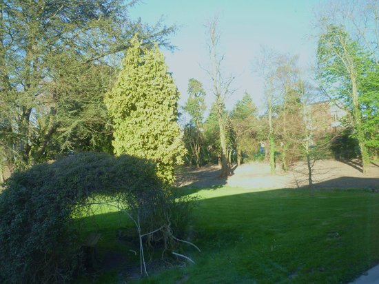 Boyne Valley Hotel & Country Club: downstairs room view