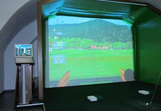Chateau Heralec - Boutique Hotel & Spa by L'OCCITANE: Golf simulator