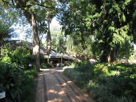 Sabi River Sun Resort : Eingang zur Hotel-Lobby