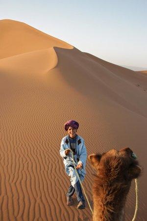 Rutas Marruecos: el cichito del desierto