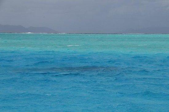 Maohi Nui : amazing water