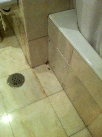 Pestana Alvor Praia: Cockroaches in the bathroom