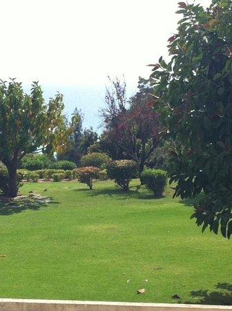 Pestana Alvor Praia: The surrounding area