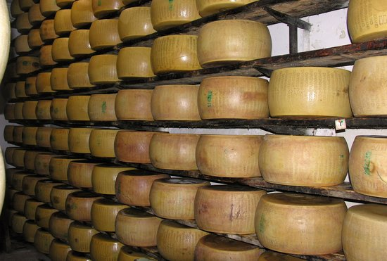 Parma Food n Wine Tours : The curing Regianno Parmesiano cheese