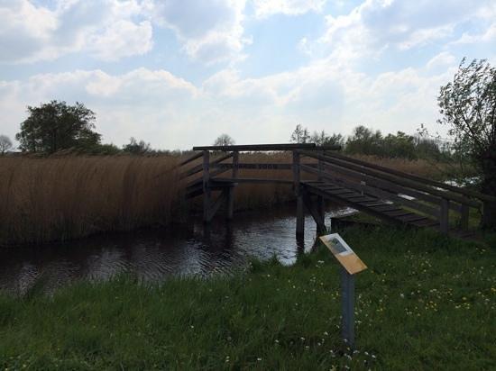 De Weerribben National Park: typische omgeving bruggen en water partijen