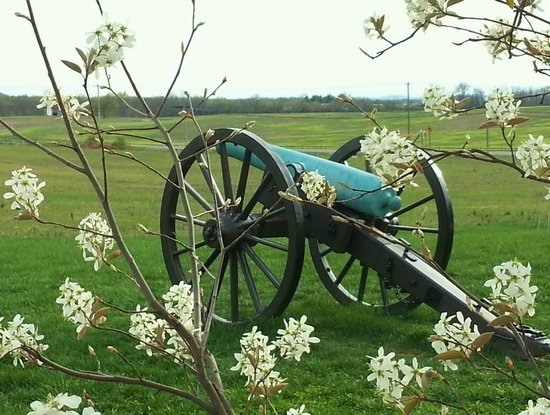 Monocacy National Battlefield : Bloom Rather Than Boom