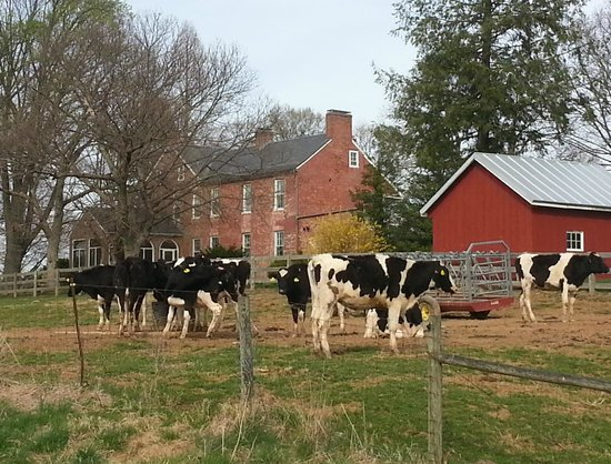 Monocacy National Battlefield : The Thomas Farm