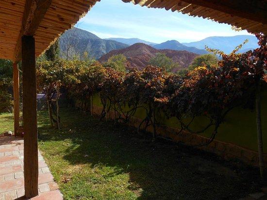Pumahuasi Hostal Boutique : jardin, vista desde la habitacion