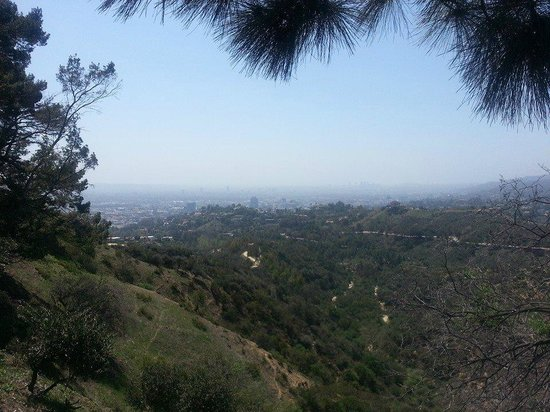 Griffith Park : A sweeping view of LA from the top