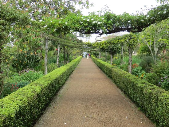 Palheiro Gardens : Gallery