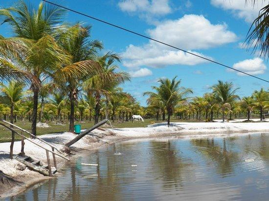 Fazenda Mae Tereza: lago maravilhoso com tirolesa e caiaque