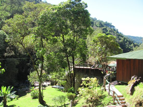 Trogon Lodge San Gerardo de Dota: View from our cabin
