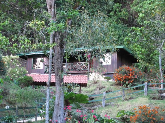 Trogon Lodge San Gerardo de Dota: Our cabin