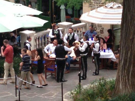 Omni La Mansion del Rio: Music at your table on the river