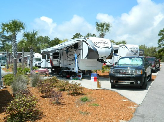 ‪‪Carrabelle Beach, an RVC Outdoor Destination‬: Campsite at Carrabelle RV Resort‬