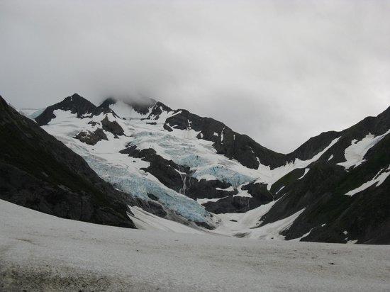 Byron Glacier Trail : Byron Glacier, July 2013