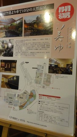 Narita View Hotel: About hot spring