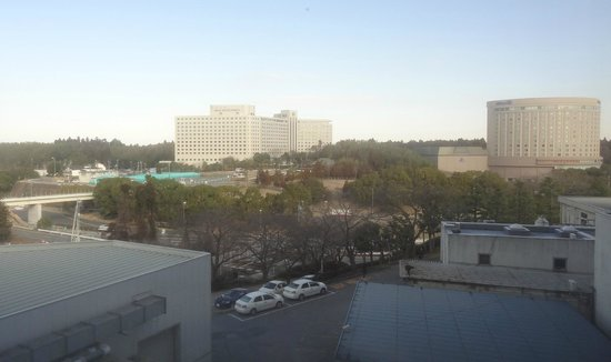 Narita View Hotel: View fro the room