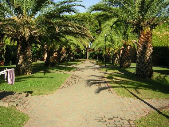 Argentario Camping Village: la via dei villini