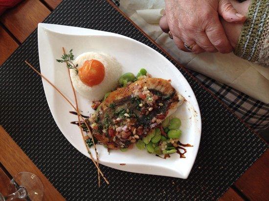 La Grillérade : Filet de st pierre à l'huile vierge riz basmati fèves et spianata