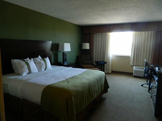 Holiday Inn World's Fair Park-Knoxville: Very clean room
