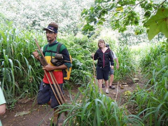 Wailua Kayak Adventures : Cole leading the hike