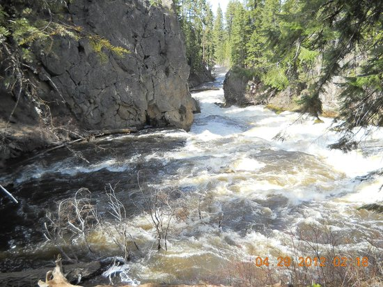 Trail to Benham Falls: Spectacular , the roar of the falls can be heard down the trail