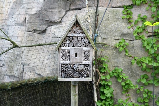 Zoo am Meer: Insektenhotel