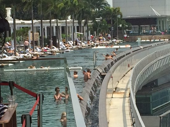 Jardin botanique photo de marina bay sands singapour - Marina bay sands piscina ...