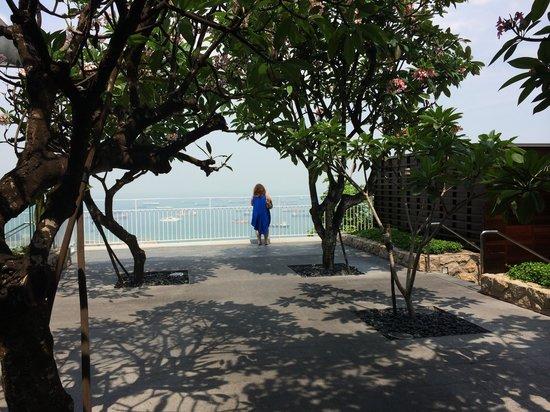 Marina Bay Sands: Jardin en haut de la tour