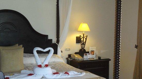 Luxury Bahia Principe Cayo Levantado Don Pablo Collection: Swans