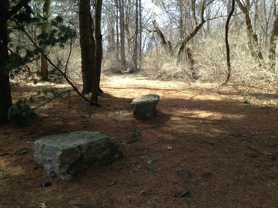 Corbett's Glen Nature Park: Park benches