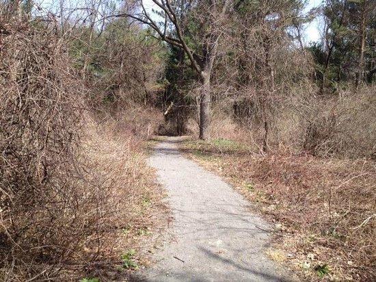 Corbett's Glen Nature Park: Park trail