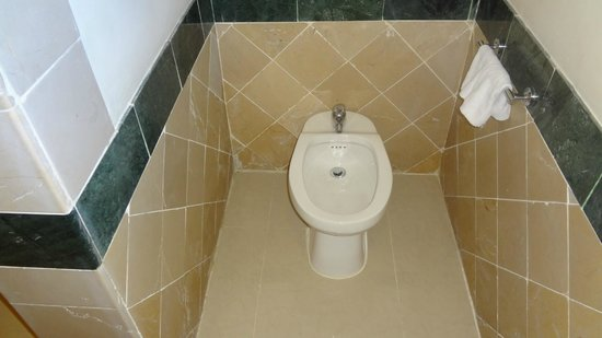 Luxury Bahia Principe Cayo Levantado : Strange sight - bidet