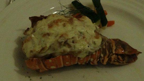 Luxury Bahia Principe Cayo Levantado Don Pablo Collection: Monster lobster tail!