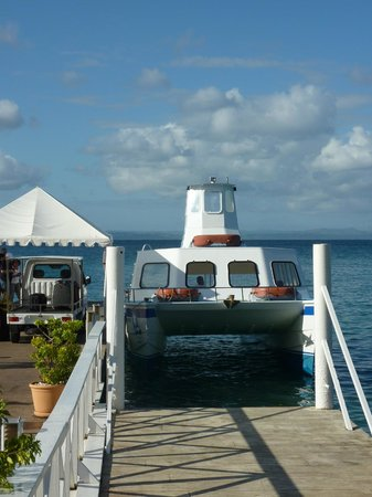 Luxury Bahia Principe Cayo Levantado Don Pablo Collection: Ferry boat from mainland docked at hotel
