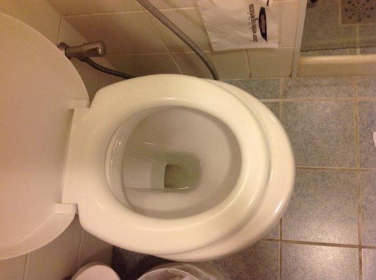 Ibis Paulista: Assento do vaso sanitário é visivelmente pequeno demais!